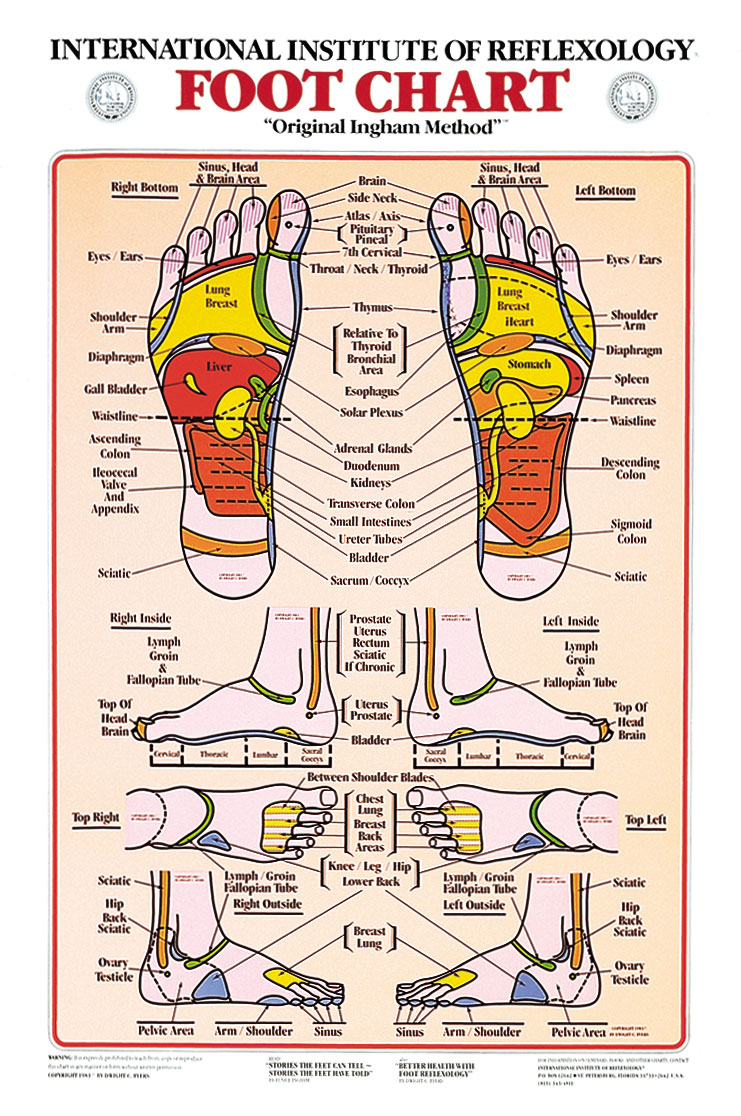 Impertinent image within printable reflexology foot chart