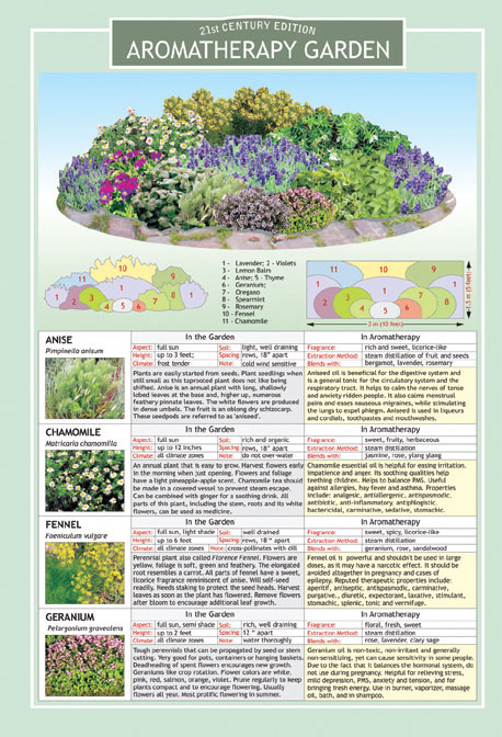Aromatherapy garden chart for Nursery charts